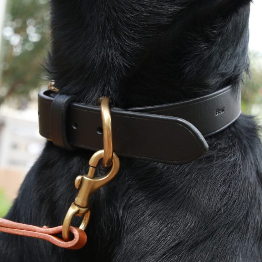 cocochi Original Dog Lead<br>ドッグリード